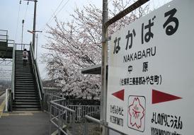 2011nagabaru.JPG